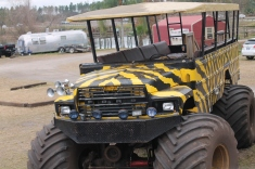 "This is a picture of the ""small"" swamp buggy.  Crazy!"